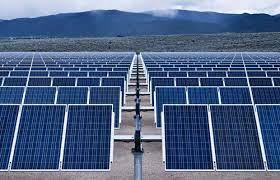 Sun energy using plant to generate electric power
